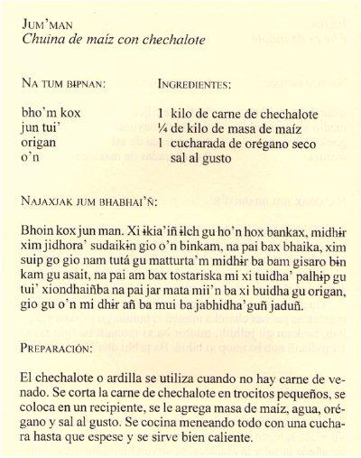 Receta tepehuana de Jum'man, chuina de maíz con chechalote [6]