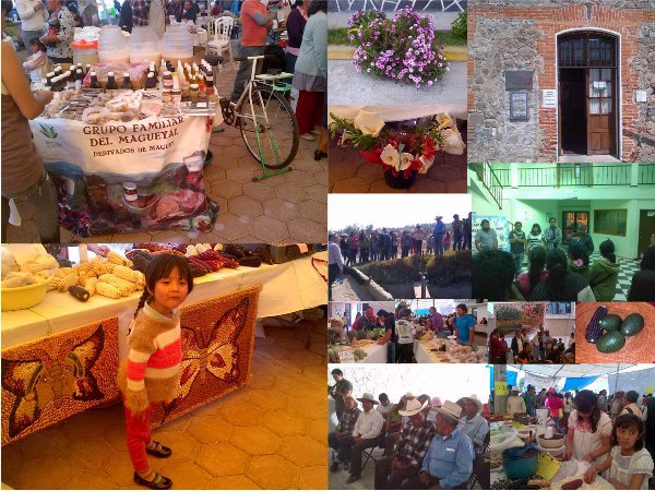 Un cúmulo de bellas imágenes de la visita a Tlaxcala