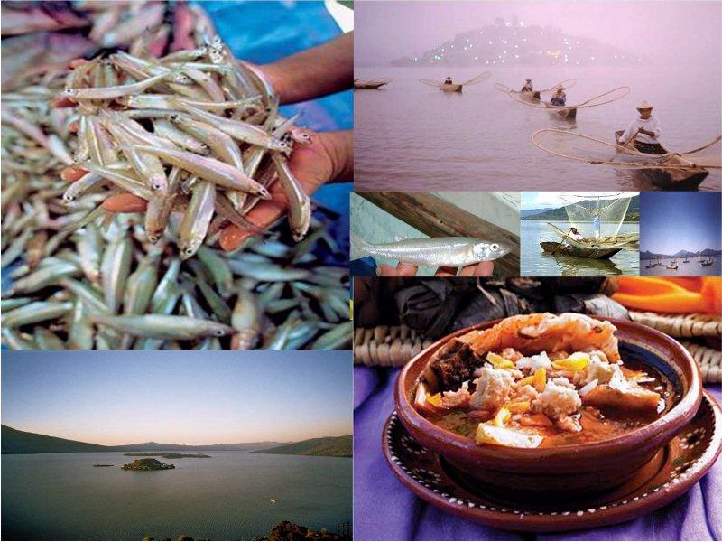 Pescado blanco, pescadores, en el Lago de Pátzcuaro, plato con churipo (14)