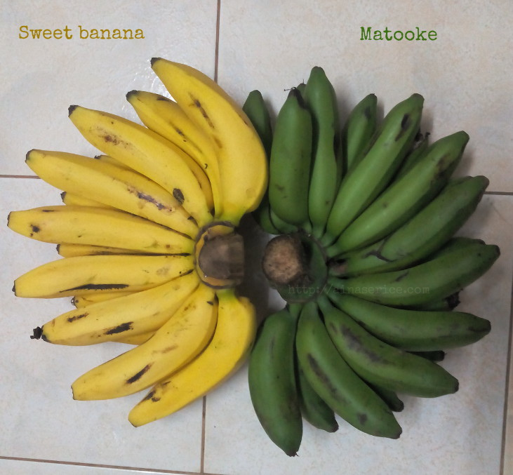 matooke-vs-sweetbanana