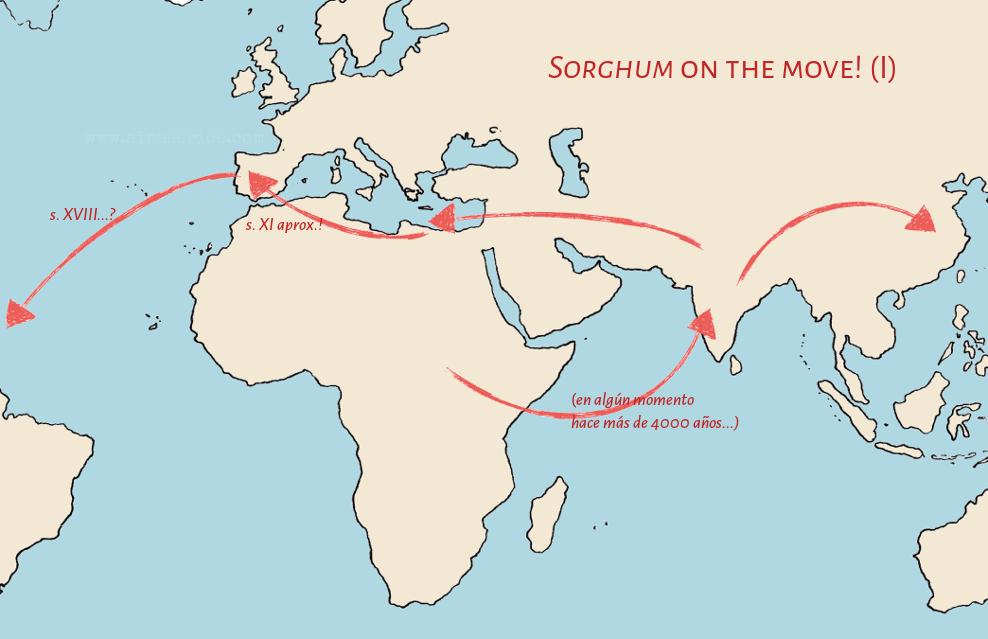 sorghum-map-1